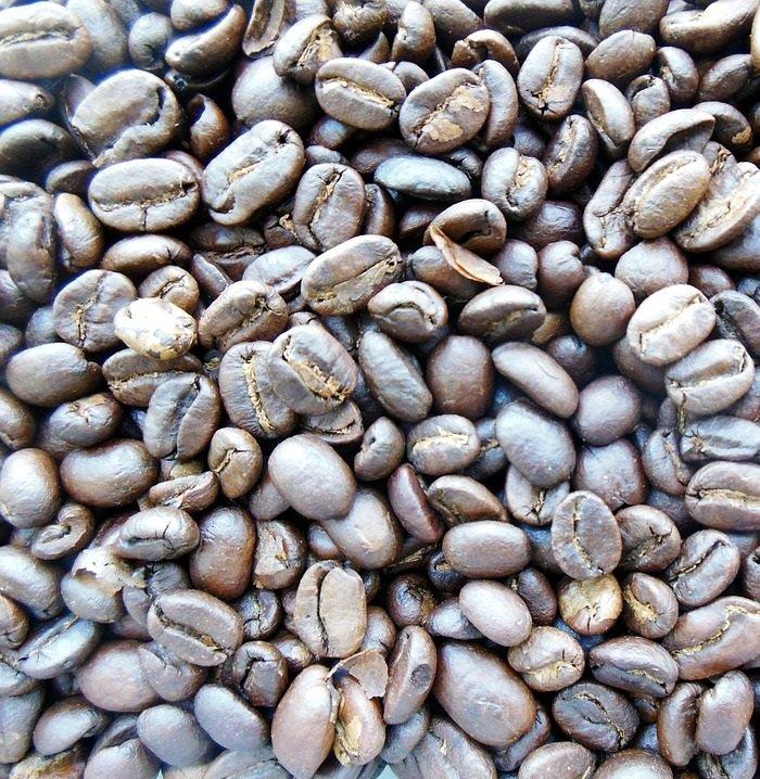 Luwak / Nilsson/ Pupiņas vai malta kafija, 1000 g, cena EUR par 1 kilogramu, no